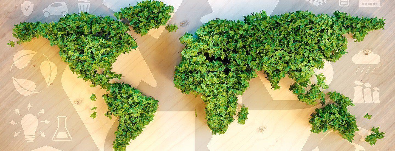 bæredygtig business case