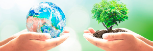 En bæredygtig business case