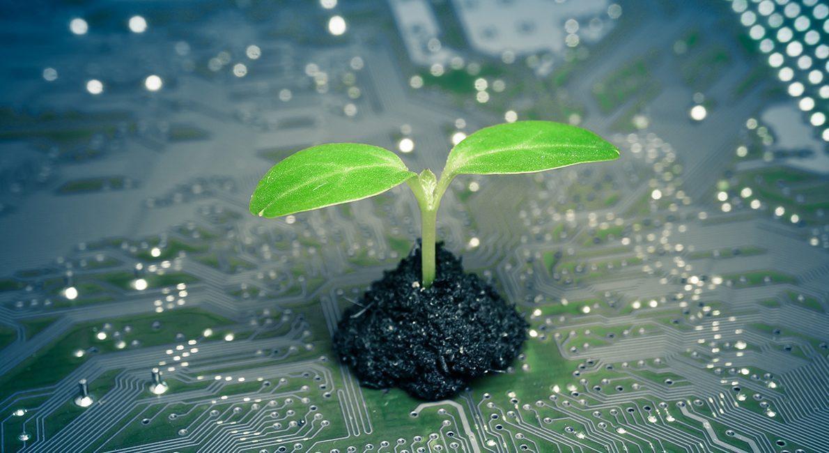 Gør klimamålene os til en grøn pioner?